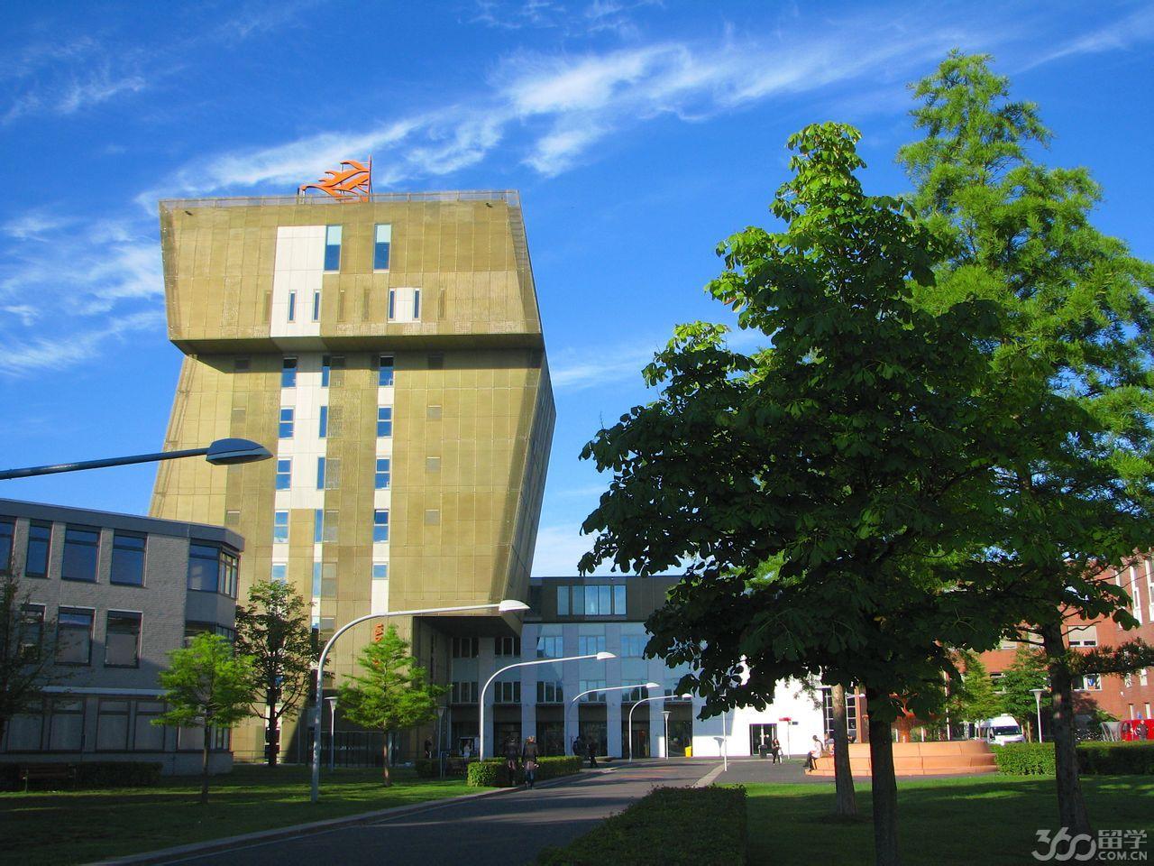格罗宁根汉斯大学