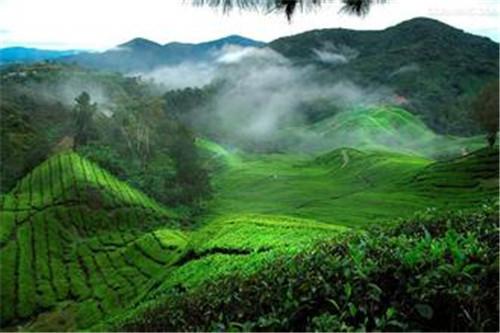 马来西亚留学硕士申请条件