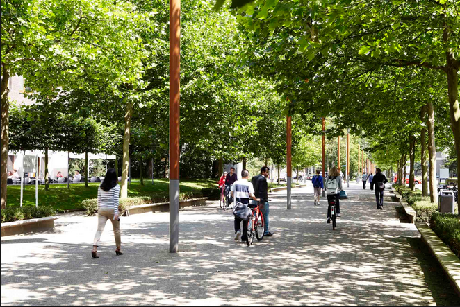 赴荷兰留学商科:选择蒂尔堡大学不会错!