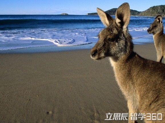 澳大利亚留学,澳洲留学行前准备
