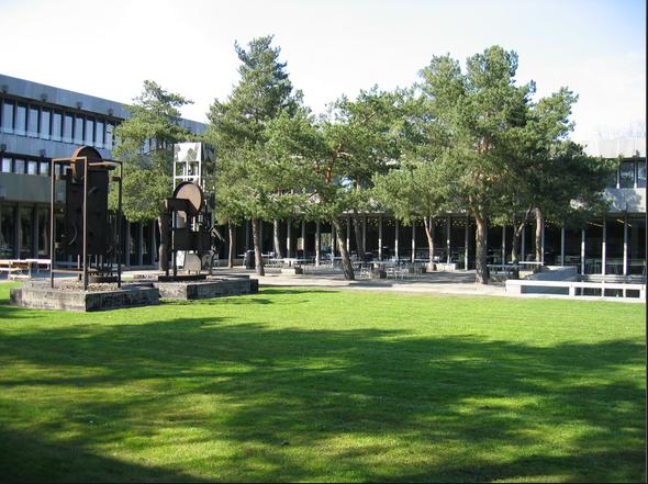 成功案例:精心准备 合理规划 顺利申请丹麦技术大学