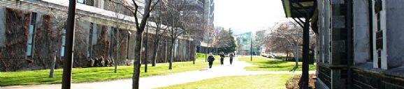 奥塔哥大学旅游管理专业