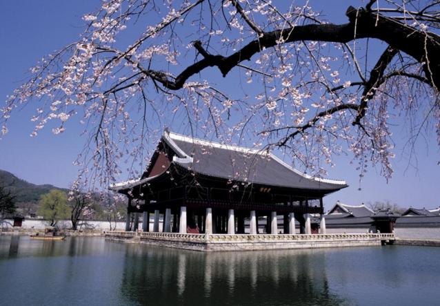 韩国留学申请的几大误区,你中招了没?
