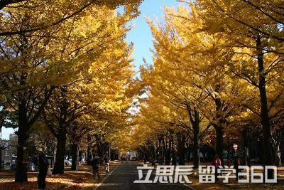 日本佐伯风景手机壁纸