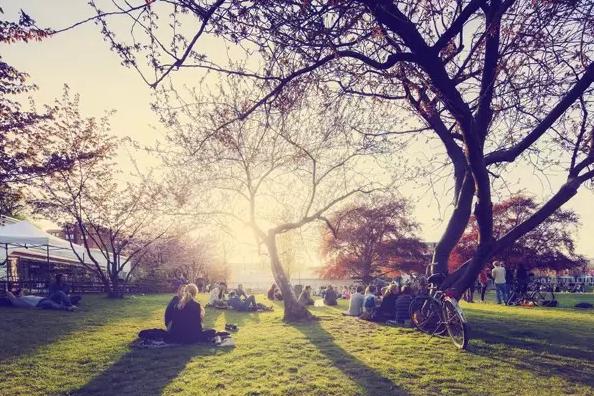 荷兰留学:在荷兰留学是怎样一种感受!