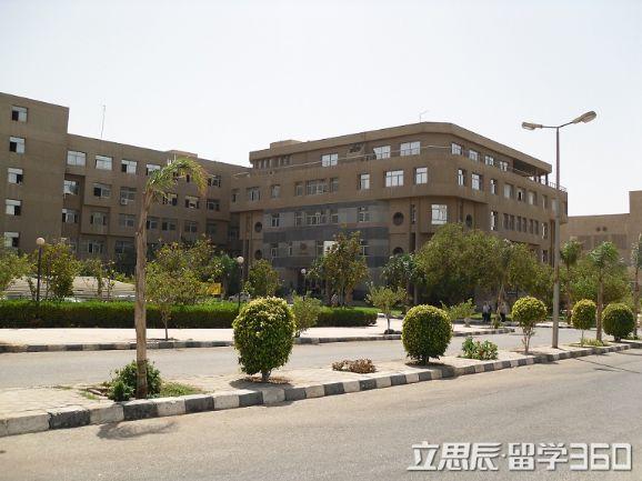 埃及阿勒旺大学所设专业一览