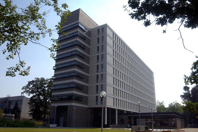 DIY申请失败 在傅老师帮助下杨同学成功申请蒂尔堡大学