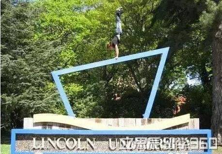 高中毕业生去qile518林肯大学读葡萄种植专业怎么样