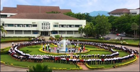 qile518湄南河大学