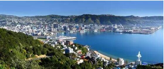 新西兰留学:高中毕业生留学新西兰方案详解