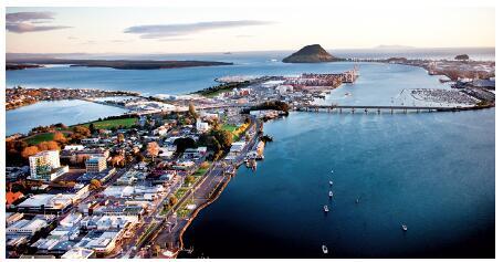 新西兰留学:申请新西兰大学的主要学位课程和途径