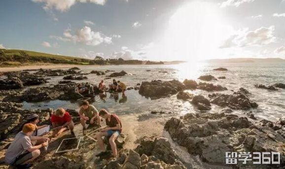 新西兰留学:三个种类的学校对应着三种不同入读途径介绍
