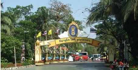 泰国农业大学的校际合作