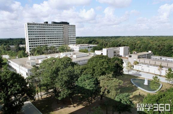 蒂尔堡大学――被评为荷兰最好的硕士大学