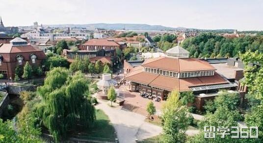 卡塞尔大学