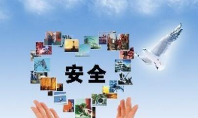 海外留学 | qile518留学超实用信息