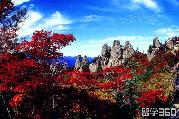 留学福利:最全韩国赏红叶指南