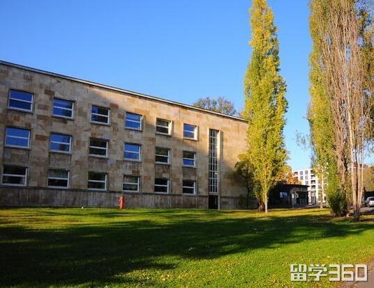 法兰克福大学