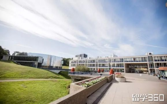埃塞克斯大学精品认证课程信息更新
