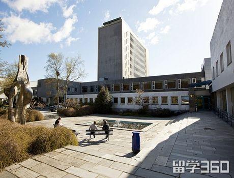 挪威商学院毕业后好找工作吗?