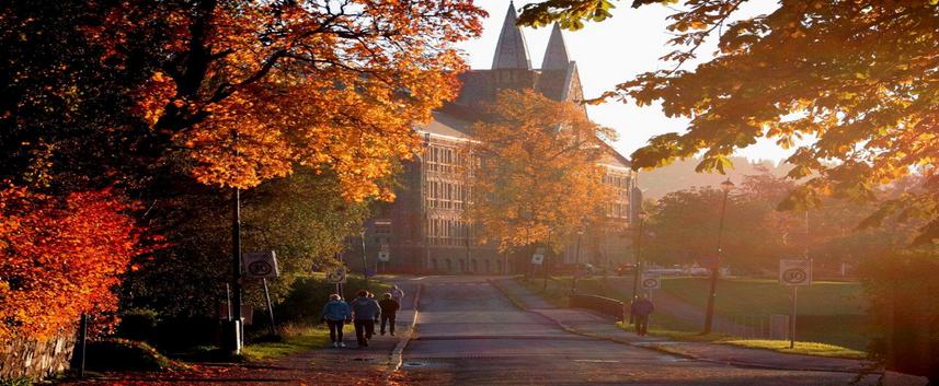 挪威科技大学挂科太多怎么办?