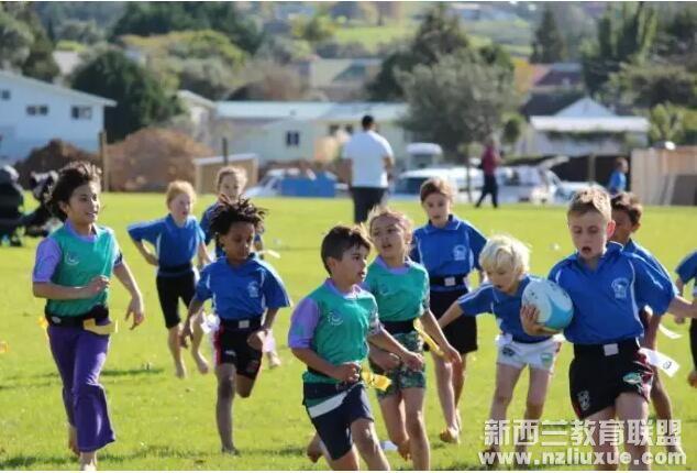 新西兰留学 新西兰中小学教育体系是怎样的?
