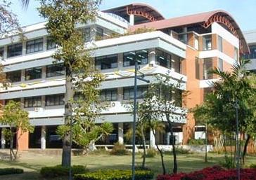 qile518东方大学
