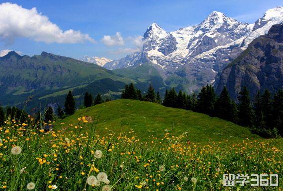 瑞士qile518学校