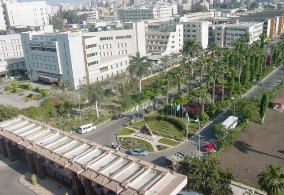 埃及曼苏尔大学