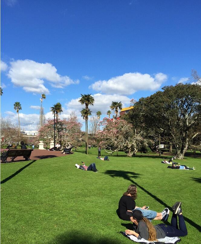 留学新西兰:奥克兰大学八大学院的优势和特色