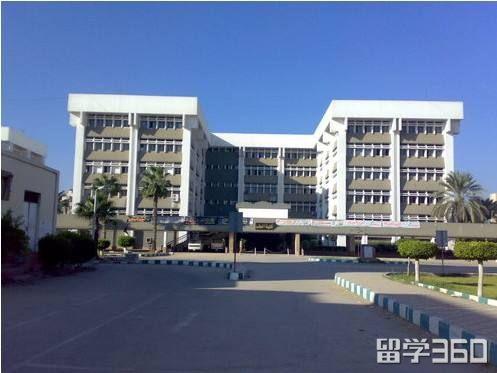 埃及坦塔大学
