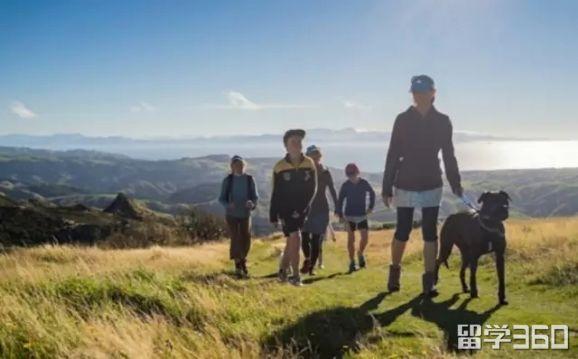 新西兰留学理由