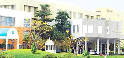 qile518东亚大学