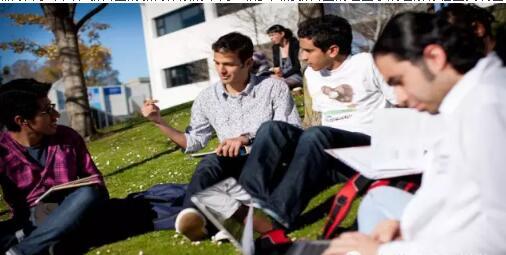 留学新西兰:同属于政府新西兰公立大学和理工学院有什么区别?
