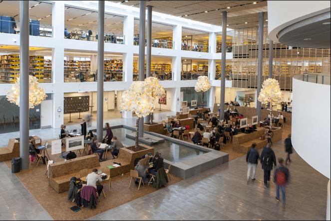 出国留学,选择丹麦哥本哈根大学怎样?