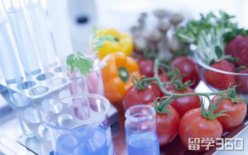 新西兰留学食品科学与工程专业