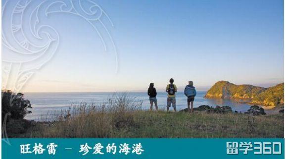 新西兰留学北方理工学院食宿条件