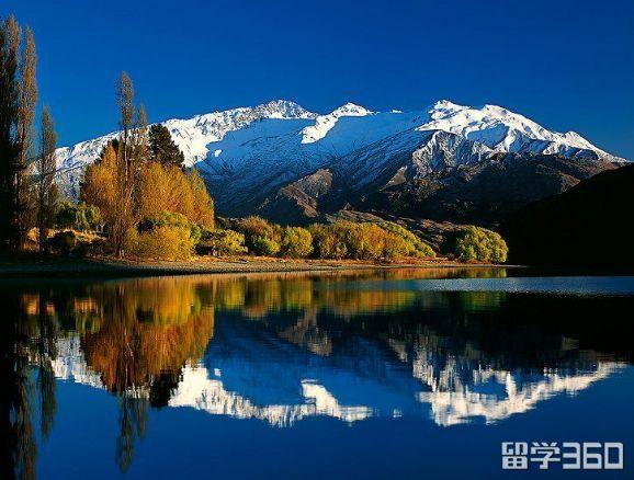 申请新西兰高中需要雅思成绩吗