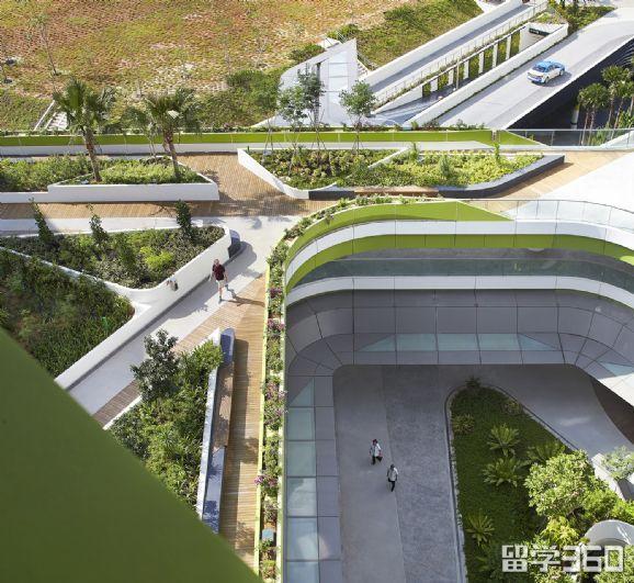 新加坡科技设计大学专业