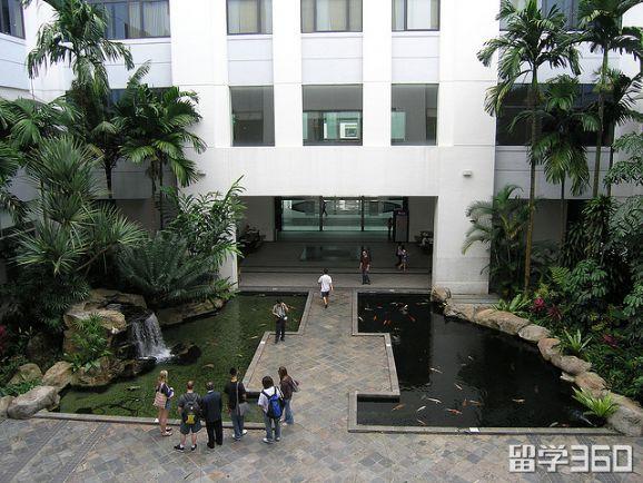 新加坡sim学校的专业