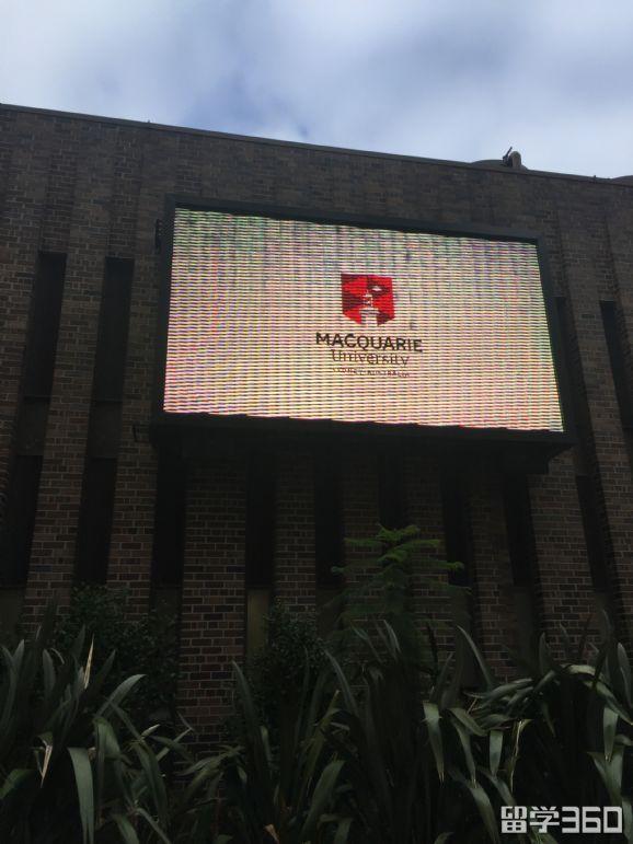 麦考瑞大学商学院条件