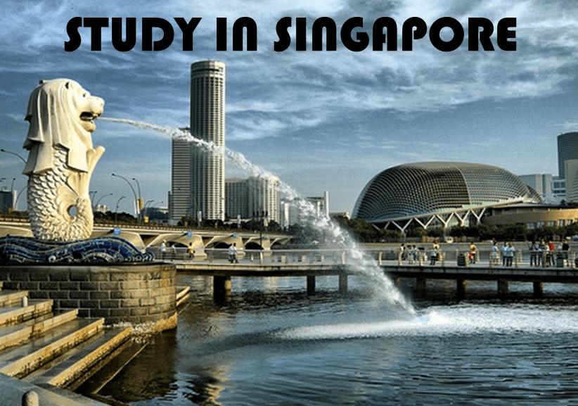 新加坡留学学啥好