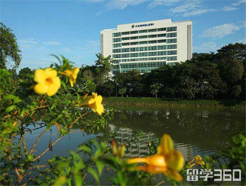 马来亚大学怎么申请