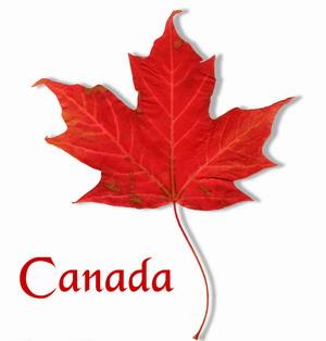 加拿大留学续签流程