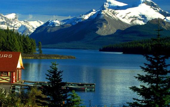 加拿大留学移民倾向拒签