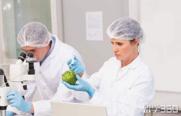 食品科学在新西兰好移民吗
