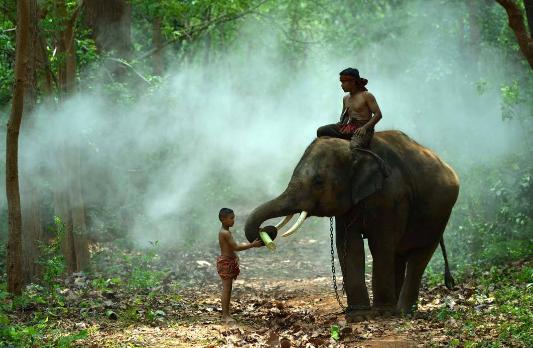 泰国留学有前途吗?就业前景好不好?