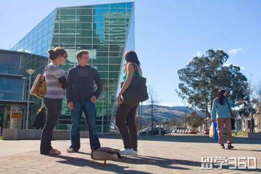 新西兰奥塔哥大学创业学硕士MBA的必修课程之一