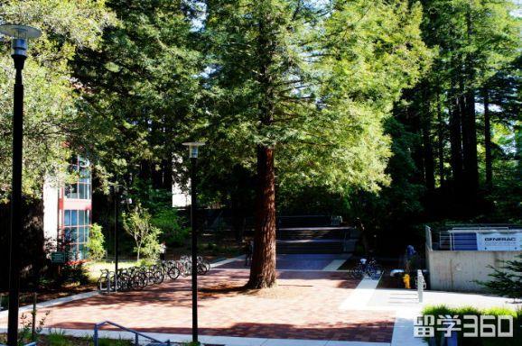 美国加州大学圣克鲁兹分校研究生申请环境研究系