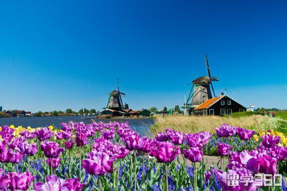 荷兰留学金融学申请注意事项讲解
